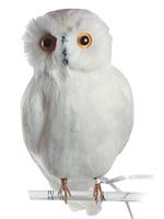 PUEBCO ArtificialBirds・白フクロウ C