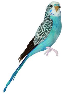 PUEBCO ArtificialBirds・インコ Blue
