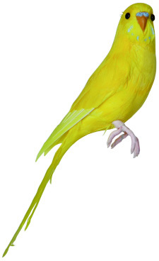 PUEBCO ArtificialBirds・インコ Yellow